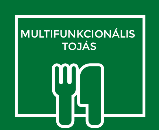 MULTIFUNKCIONÁLIS TOJÁS
