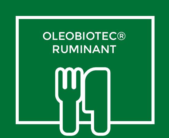 OLEOBIOTEC® RUMINANT
